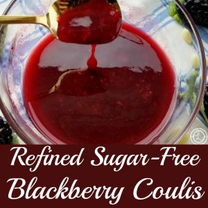 Refined Sugar-Free Blackberry Coulis